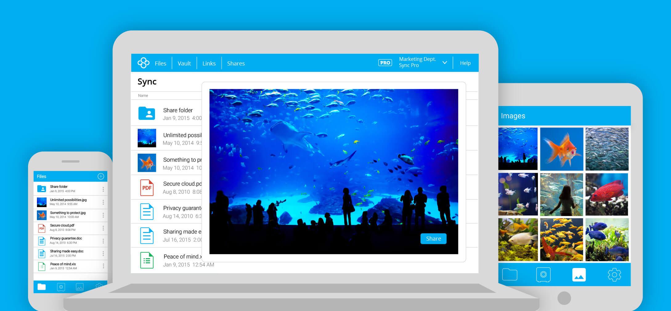 Sync.com Cloud Storage Free