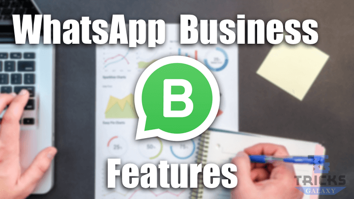 WhatsApp Business APK Features