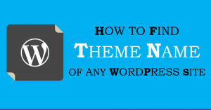 Find Theme Name of Any WordPress Site