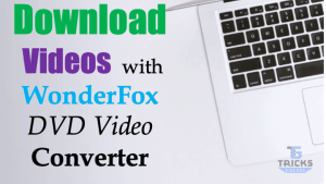 WonderFox Video Converter Review